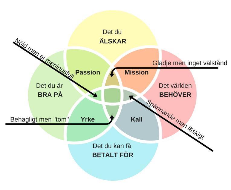 Visualisering av Ikigai